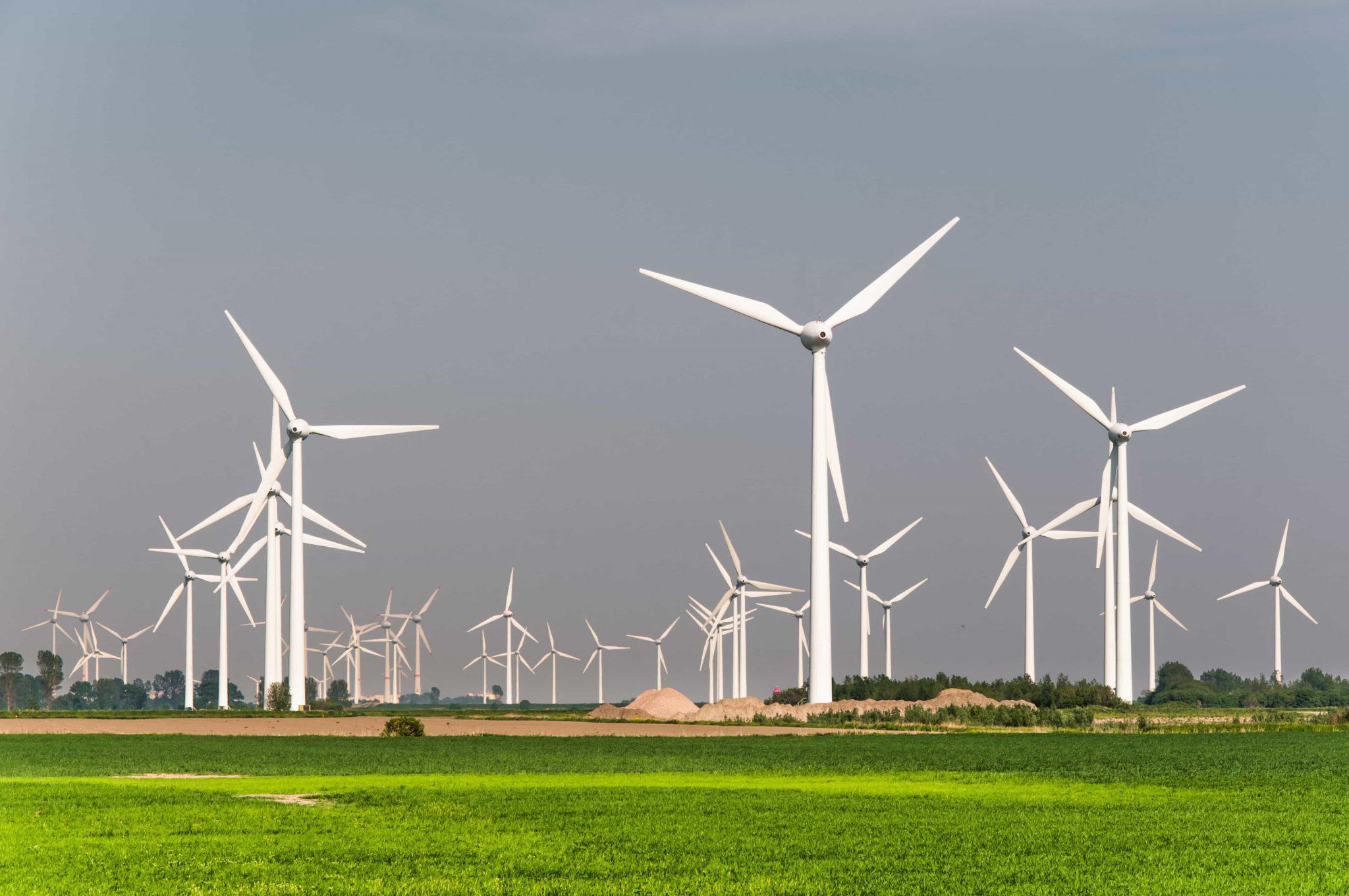 Groene gekte probeert Nederland te vernietigen