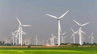 Vindt u dat de overheid moet stoppen Nederland vol te zetten met windturbines?