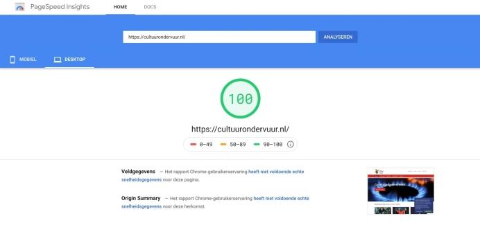 Google pagespeed nieuwe site