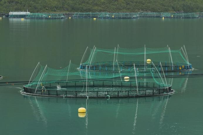 Fish farming in Torskefjorden Senja Troms Norway 2014 August 2