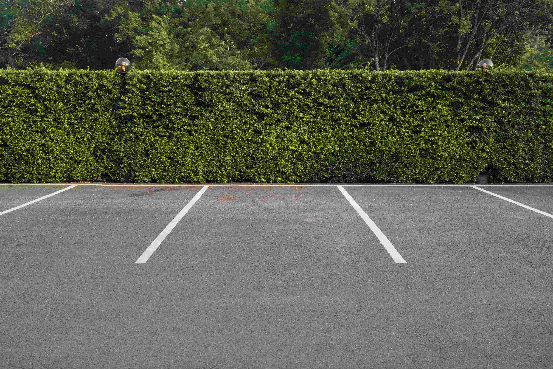 Amerikaanse pro-lifers kopen parkeerplaats, omzeilen waakverbod